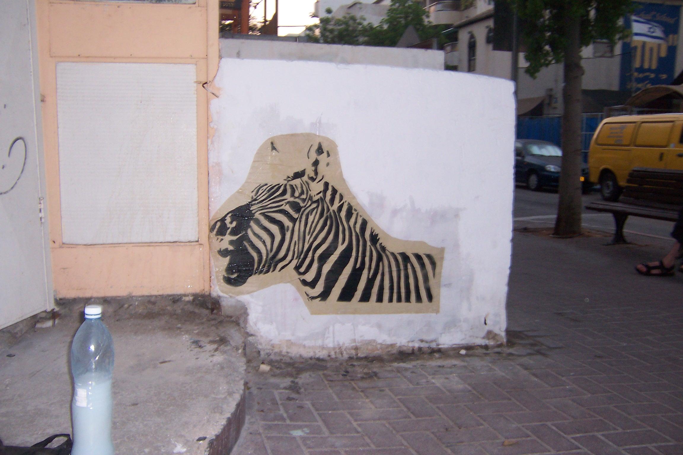 ein, zebra, steht, einer, strasse, in , tel, aviv