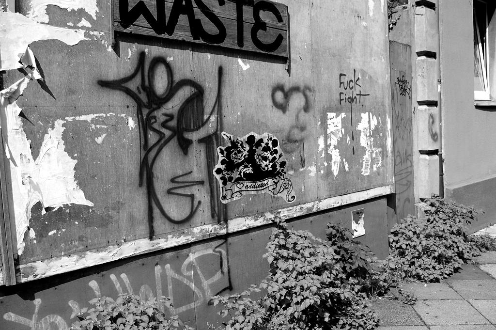 nordstadt,wall, blumen, strasse, strau��